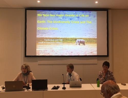 Bonn_presentations
